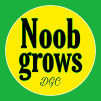 noobgrows
